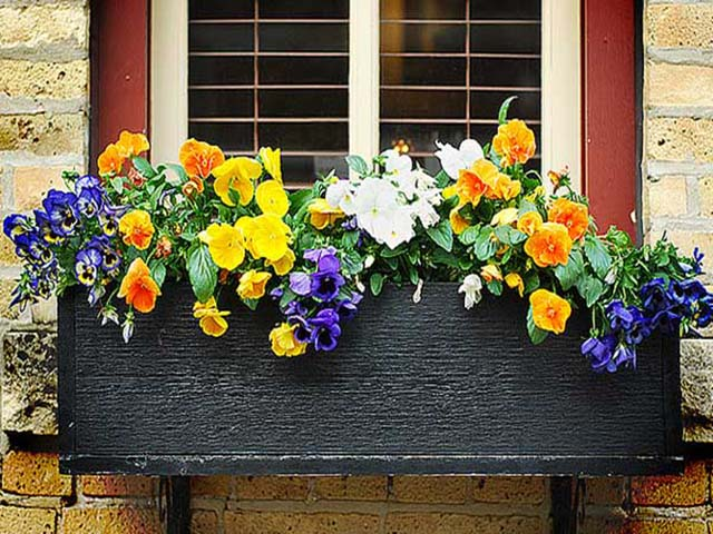 flower-box-mothers-day-gift1