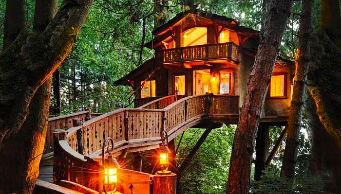 tree-houses-feature