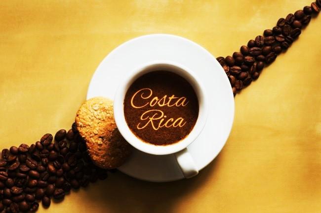 2lbs-Fresh-Roasted-Gourmet-Costa-Rica-Tarrazu-Coffee-Calusa-Coffee-Roasters-33 (3)